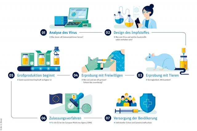 08 infografik-impfstoffentwicklung-quer